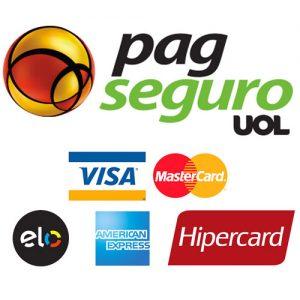 PAGSEGURO-500X500-FUNDO-BRANCO.jpg